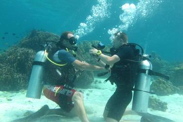 サタン県リペ島での2日間にわたるスキューバダイバーコース