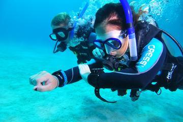 Curso de mergulho avançado em água...