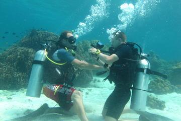 Curso de mergulho em água abertas de...