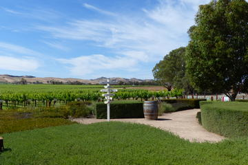 Barossa Valley Day Trip from Adelaide including Aussie Barbecue Lunch