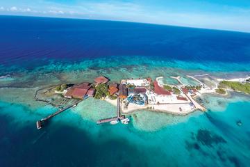 Passaporto per il paradiso: De Palm Island, Aruba