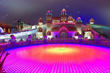 4-Hour Private Tour of the Largest Indoor Ice and Snow Paradise