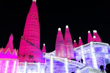 All-Inclusive Private Day Tour to Ice and Snow Festival plus Icy Swimming Show
