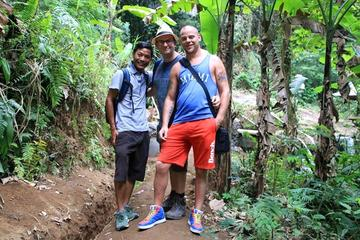 Full-Day Trekking and Sightseeing Tour from Ubud