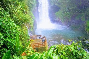 Day trip from San Jose to Wildlife Refuge La Paz Waterfall Gardens