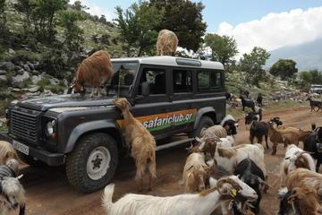 Safari d'une journée complète en Landrover au départ d'Héraklion avec...