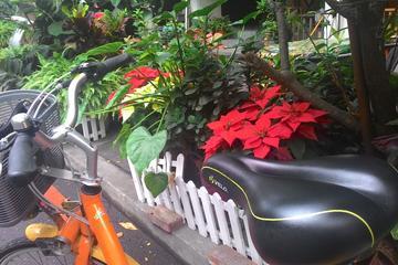 iBike Tour: City Biking and Visiting...