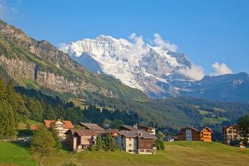 Excursion d'une journée du panorama de l'Eiger et Jungfrau au départ...