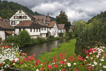 Excursion d'une journée Forêt-Noire et Chutes du Rhin au départ de...
