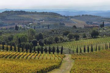 Chianti Half-Day Private Wine Tour