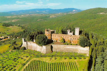 Full-Day Private Tour Taste of Chianti from Siena