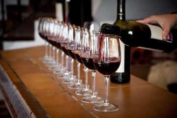 Italian Wine Experience in Siena