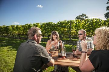 Martinborough Wine-Tasting Tour from...