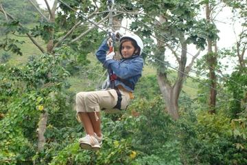 Aventure en tyrolienne au-dessus de la canopée à Punta Cana