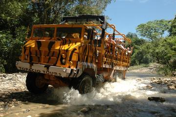 Mega Truck Safari Express