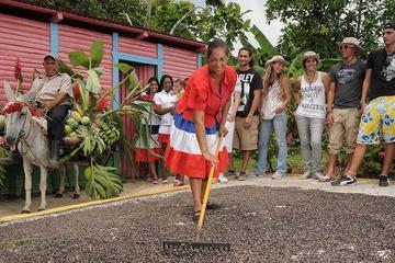 Recorrido por el paisaje rural y la cultura dominicana en vehículo 4x4