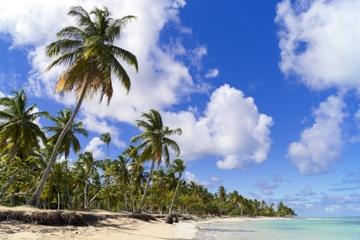 Tour la isla desierta de Cayo Paraíso...