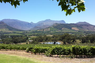 Cape of Good Hope and Cape Winelands...