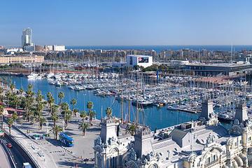 Visita guiada privada en Barcelona de...