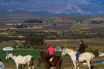 Private Tour: Cape Winelands with...