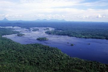Amazon Rainforest Survival Tour from Manaus