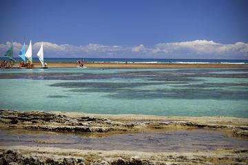 Cabo De Santo Agostinho with Buggy and Catamarã from Recife