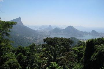 Excursão de jipe pela Floresta da Tijuca partindo do Rio de Janeiro