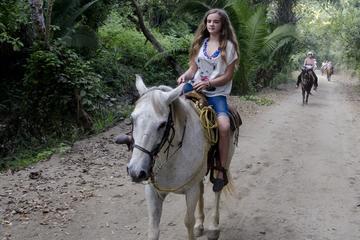 Excursión con paseo a caballo desde Paraty