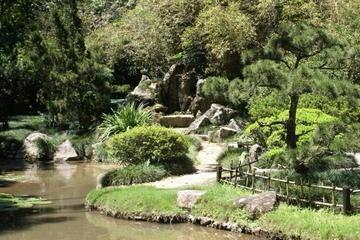 Excursión de medio al jardín botánico de Río de Janeiro