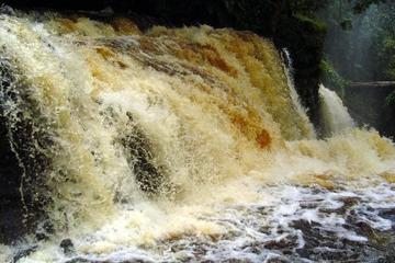 Excursión de un día a las cataratas Presidente Figueiredo desde Manaus