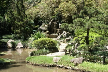 Führung durch den Botanischen Garten von Rio de Janeiro