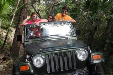 Recorrido de aventura en jeep por la selva, cataratas y cachaça desde...