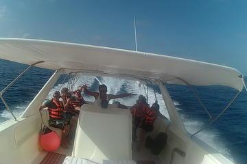 Paseo en barco por la Isla Contoy y...