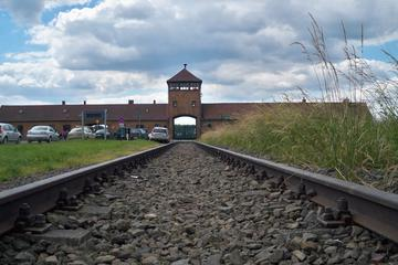 Museum Auschwitz-Birkenau Tour from...