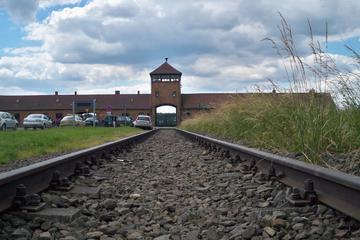 Visita normal a Auschwitz-Birkenau...