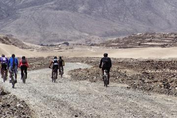 Excursión en bicicleta al yacimiento...