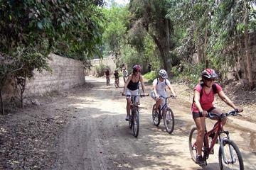 Excursión en bicicleta de montaña de día completo al Valle de...