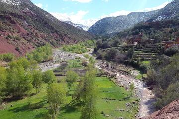 Excursion d'une journée complète de Marrakech à la vallée de l'Ourika...