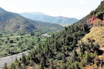 Excursion d'une journée dans le massif du Haut Atlas et les 4vallées...