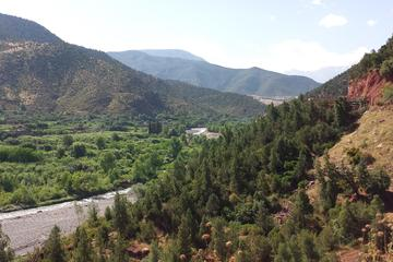 Full-Day Trip from Marrakech to the Atlas Mountains 3 Valleys through...
