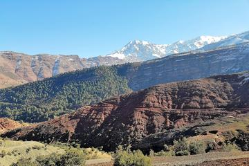 Marrakech to Imlil Valley Tour with...