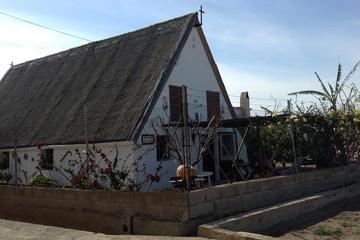 Balade à la Horta de Valence avec déjeuner local