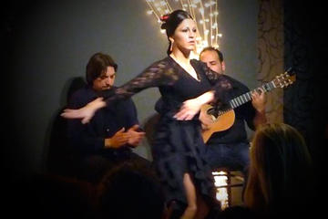 Private Valencia City Tour by Bus with Tapas and Flamenco Show