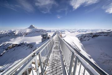 Glacier3000 et Montreux Riviera au départ de Genève