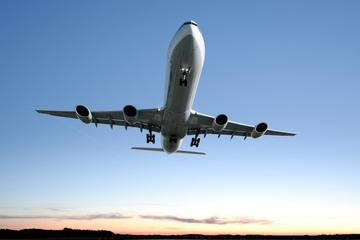 Traslado privado de chegada: do aeroporto de Genebra ao hotel em...