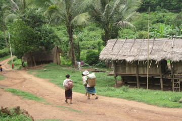 LIVING FARM FROM LUANG PRABANG