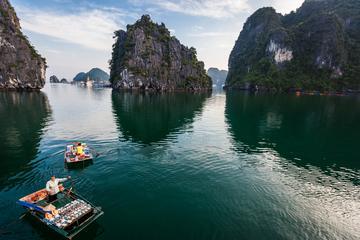 Tour privado: Crucero de lujo de un día a la bahía de Halong con...