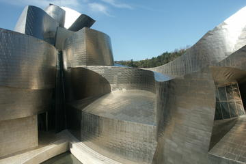 Recorrido privado por Bilbao y visita...