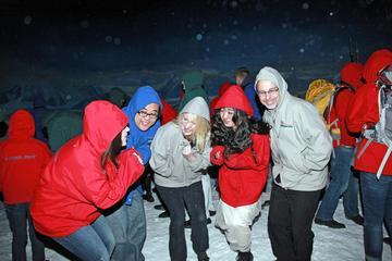 International Antarctic Center– Normale Eintrittskarte