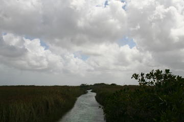 Sian Ka'an Biosphere Reserve Tour from Cancun